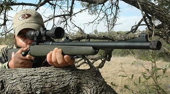 Savage Model 16 FCSS Weather Warrior In .338 Federal