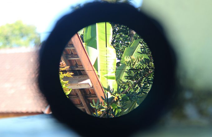 riflescope magnification