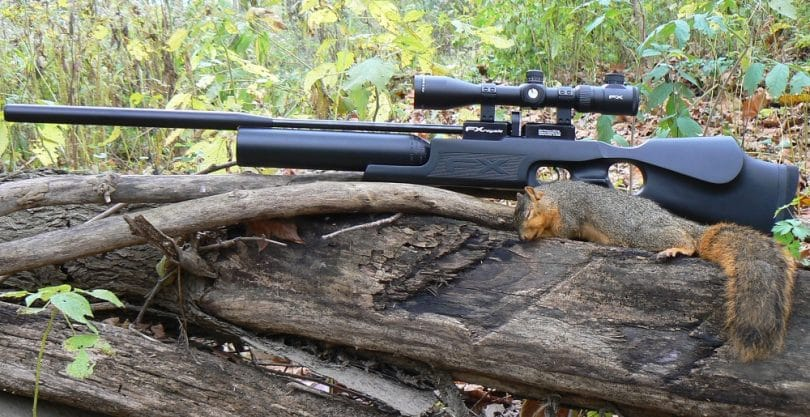 Best Air rifle review