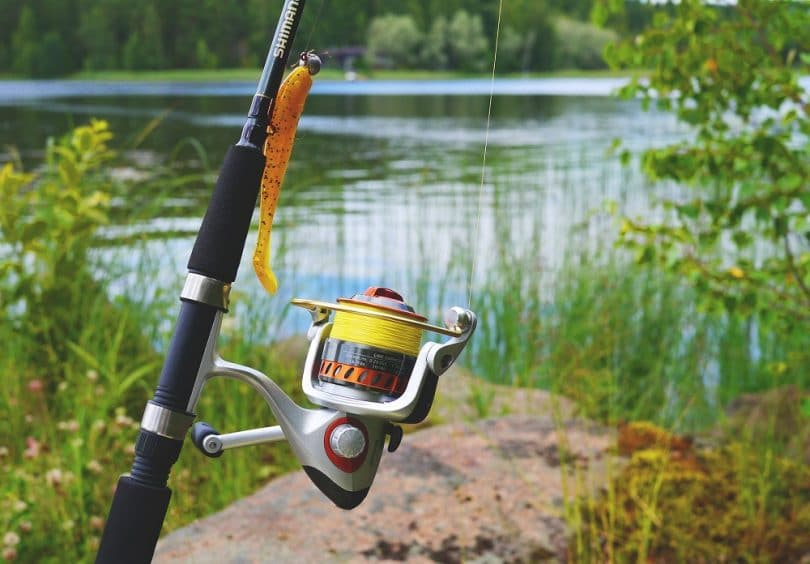 best fishing rods for 2016: reviews, expert's advice, top picks, Fishing Gear
