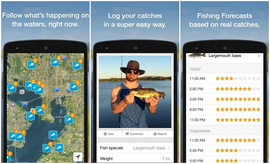 Fishing Brain app