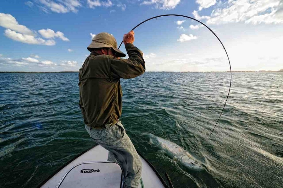 Types of Fishing Rods: Buy The One That's Best for You