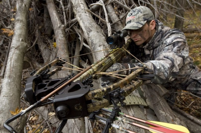 Crossbow hunting in the wild