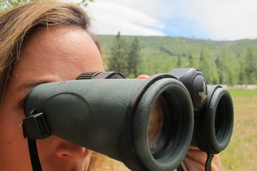 Compact binocular magnification