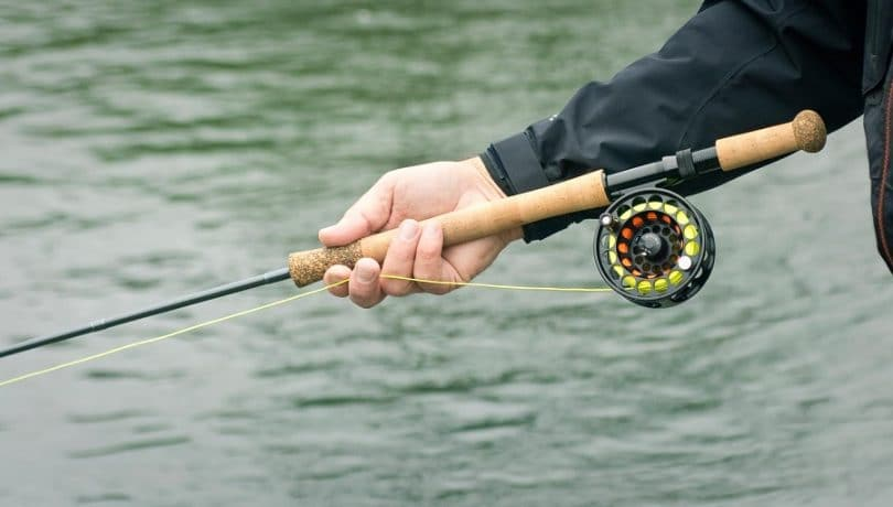 Light rod for trout fishing
