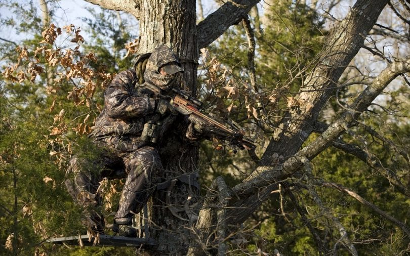 Crossbow hunter up a tree