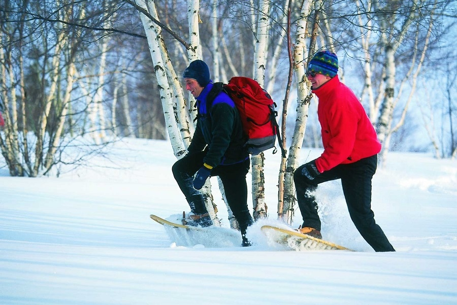 Snowshoeing in the wild