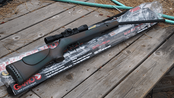 Gamo Big Cat 1250 .177 Caliber