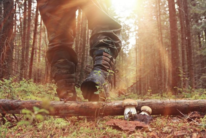Man wearing hunting boots in a forest