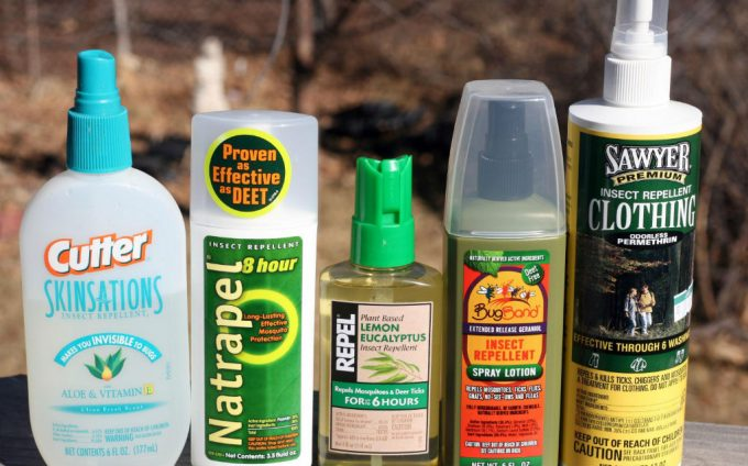 Best insect repellent