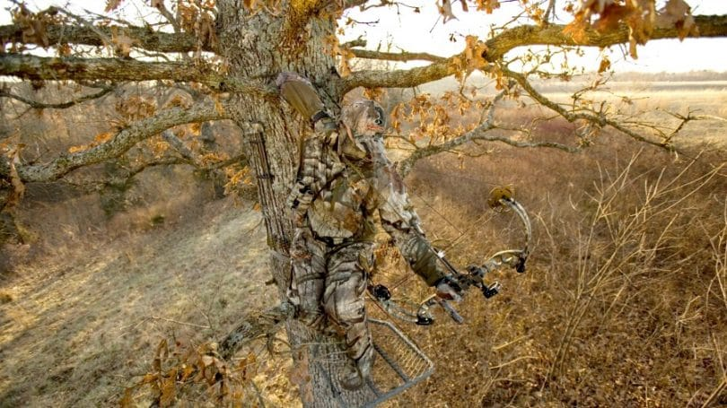 Best Bow Hunting Stands