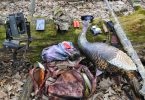 Best Turkey Hunting Gear