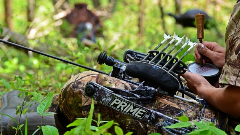 Bow Hunting Turkey tips