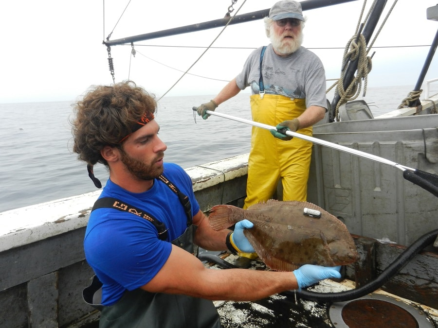 Best time to catch flounder