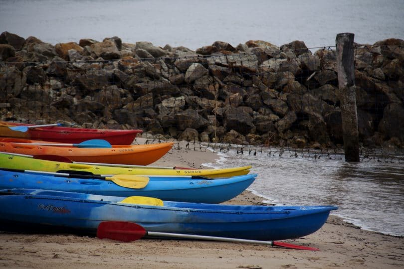 kayaks lined up on a beach