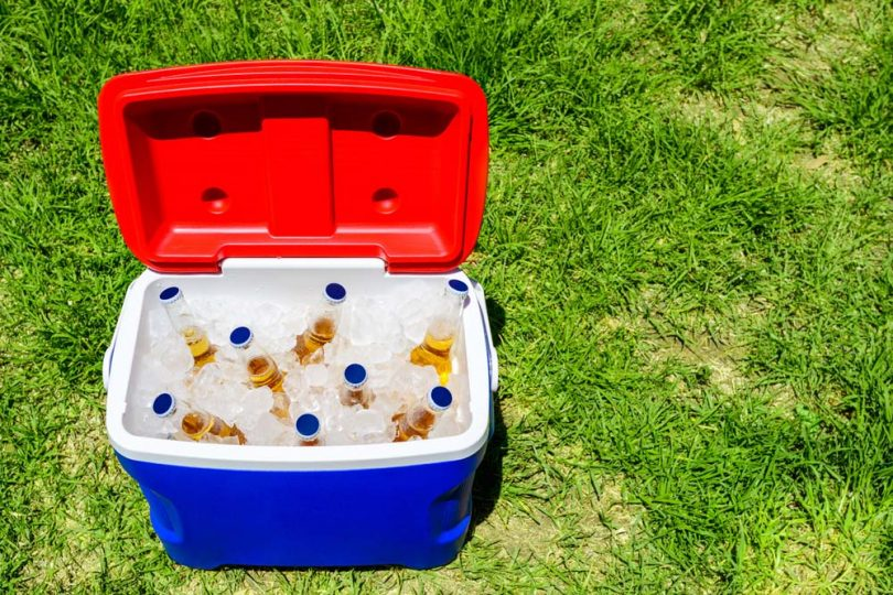 Picnic cooler box with beer bottles
