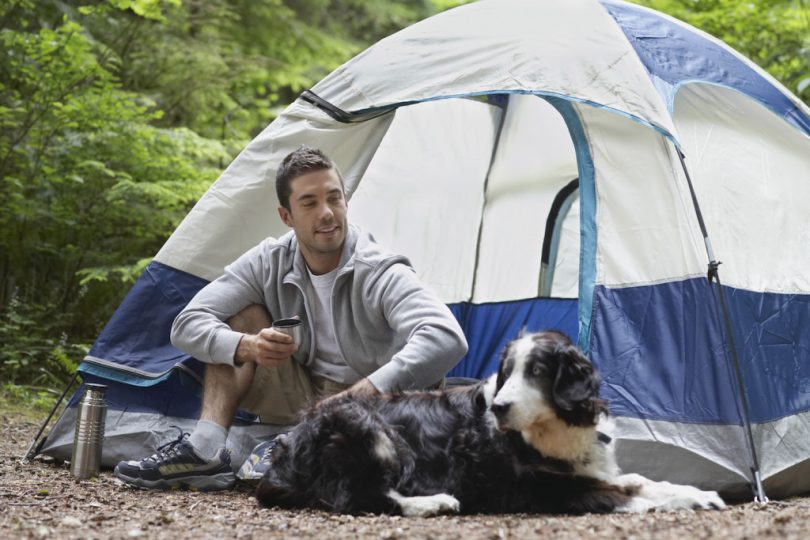 Man and his dog camping in the tent