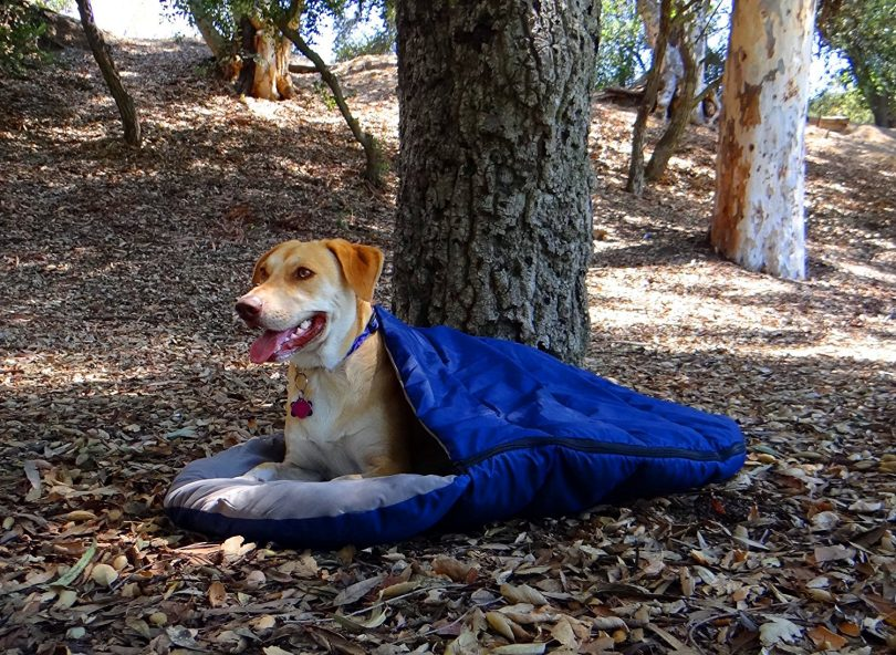 Sleeping bag for dog