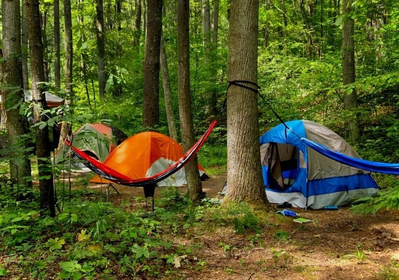Camping hammock tent in the forest