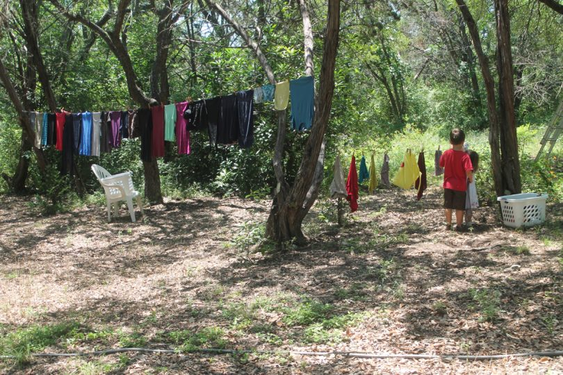 Drying clothes on trees