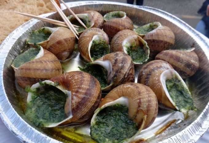 cooking snails on a hiking trip