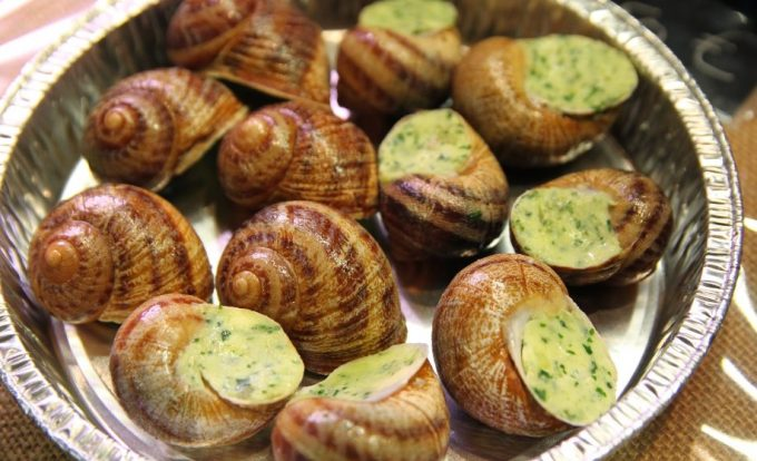 Edible Snails: Step-by-Step Instructions and Guidelines