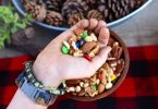 camping trail mix