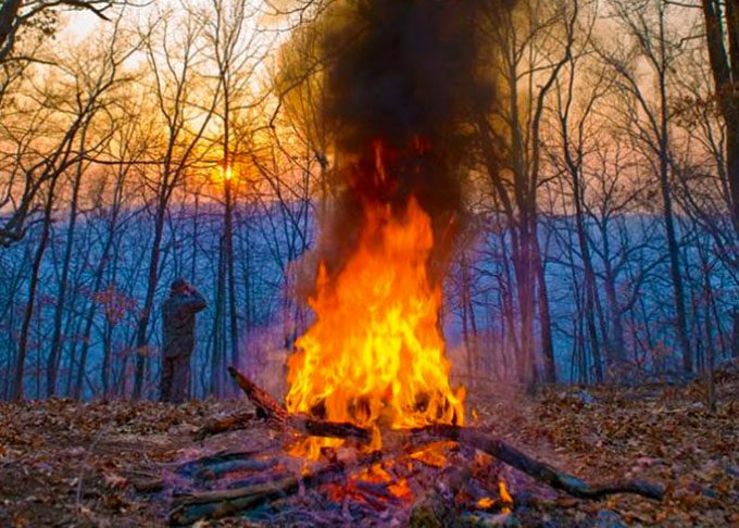 signal fire in the forest