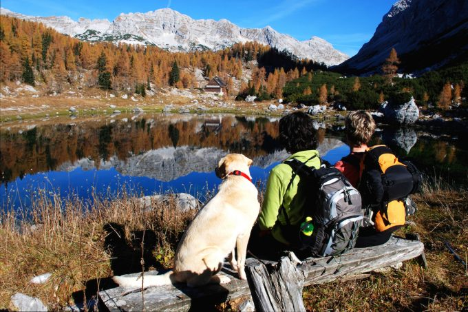 hikers sitting with their dog