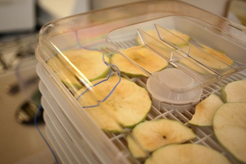 dehydrate food featured