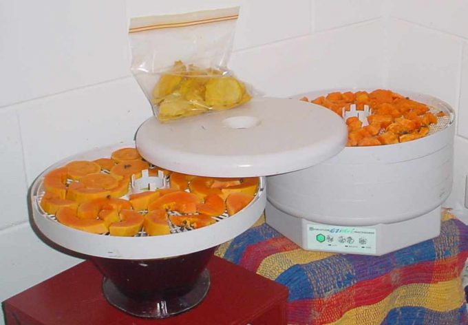 food dehydrator and dried fruit in ziploc
