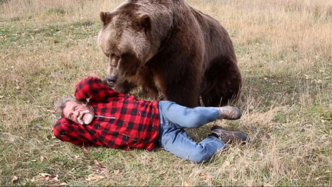 bear attacking man