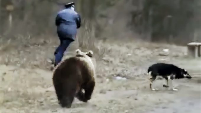 man running from bear